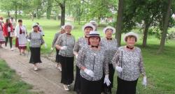 Felvonulás Harkányban 2019.05.17-én - IX. Országos Nyugdíjas Ki-Mit-Tud Döntő